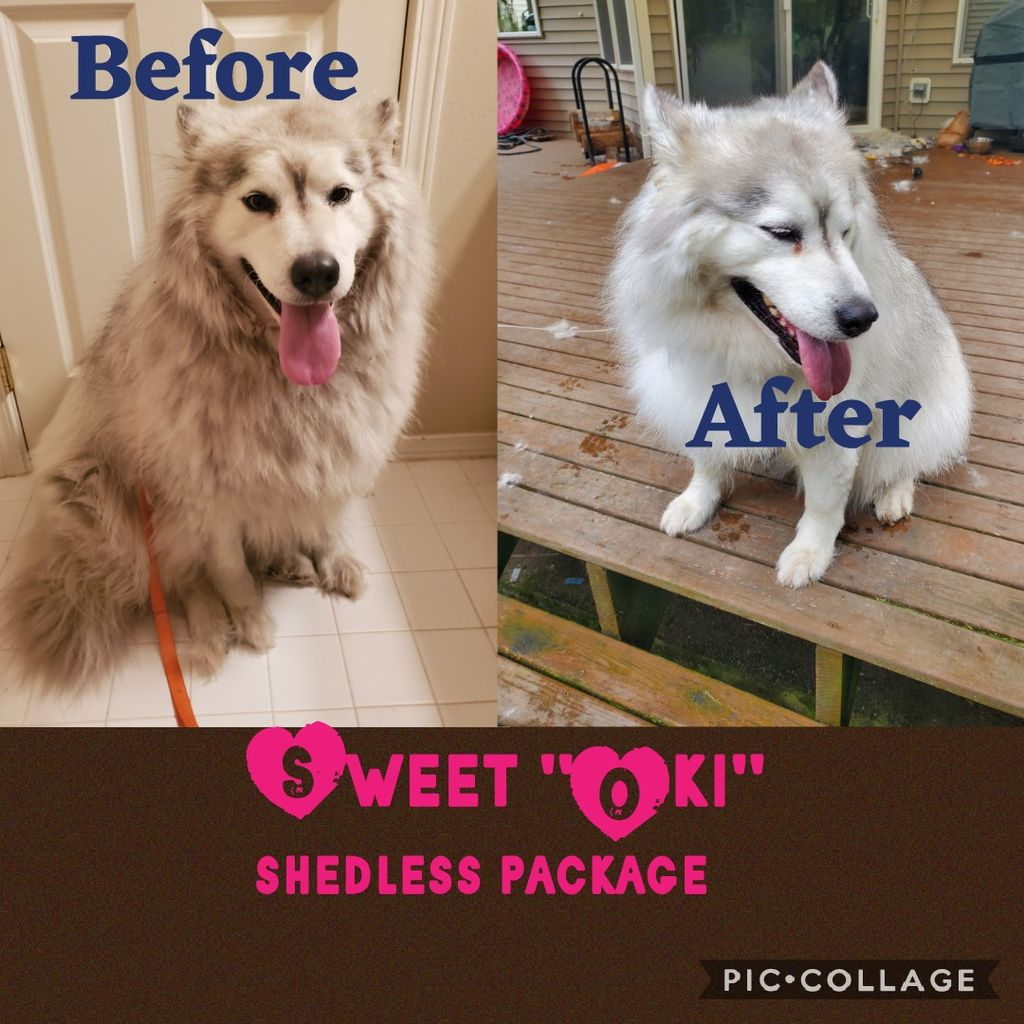 Shedless Package Add-on