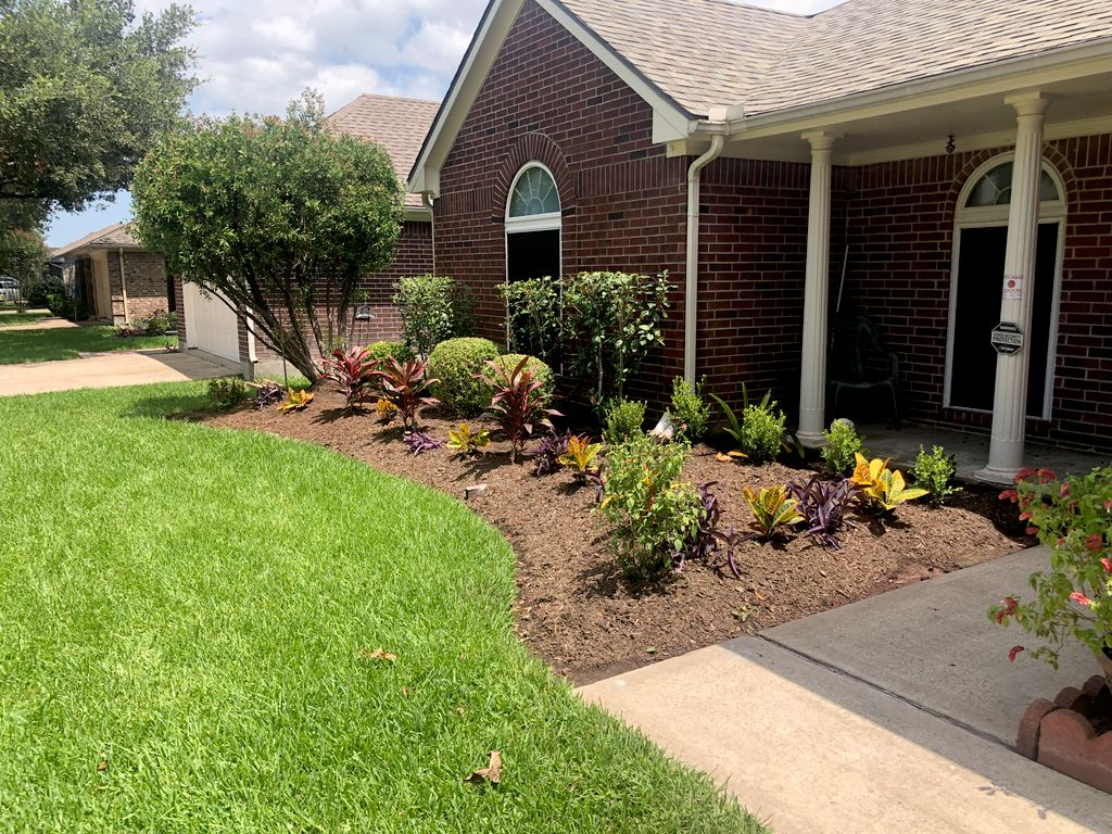 Laporte Fence and front yard plants