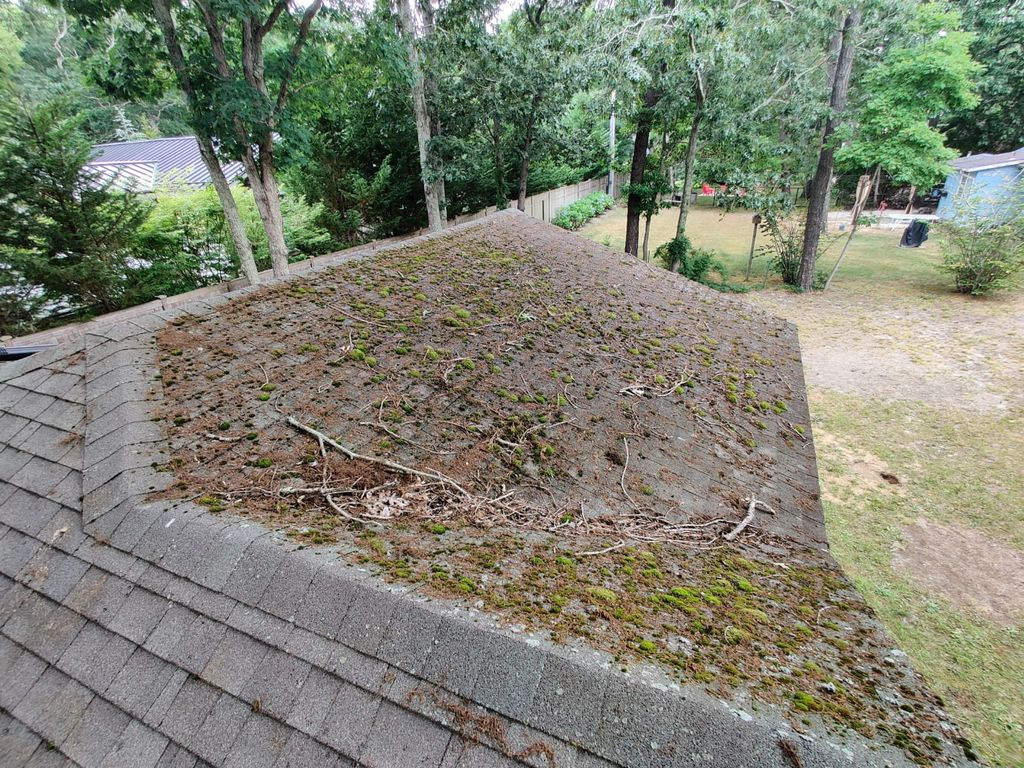 Roof Cleaning - Washing
