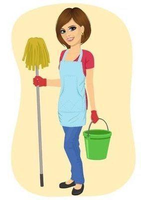 Nidia's Express Maid Service
