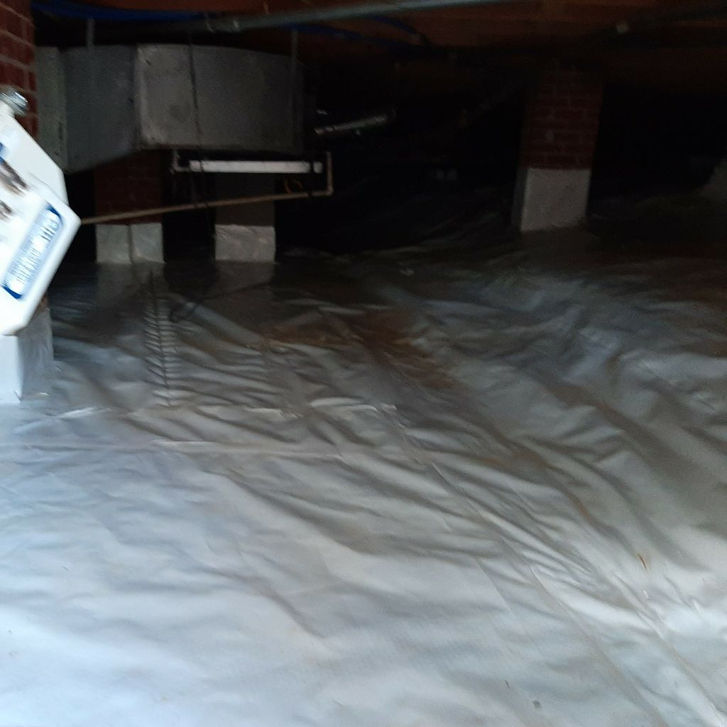 Southern Affordable Mold and Drainage