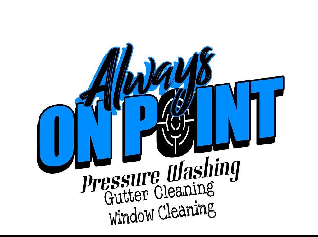 Always On Point Pressure Washing