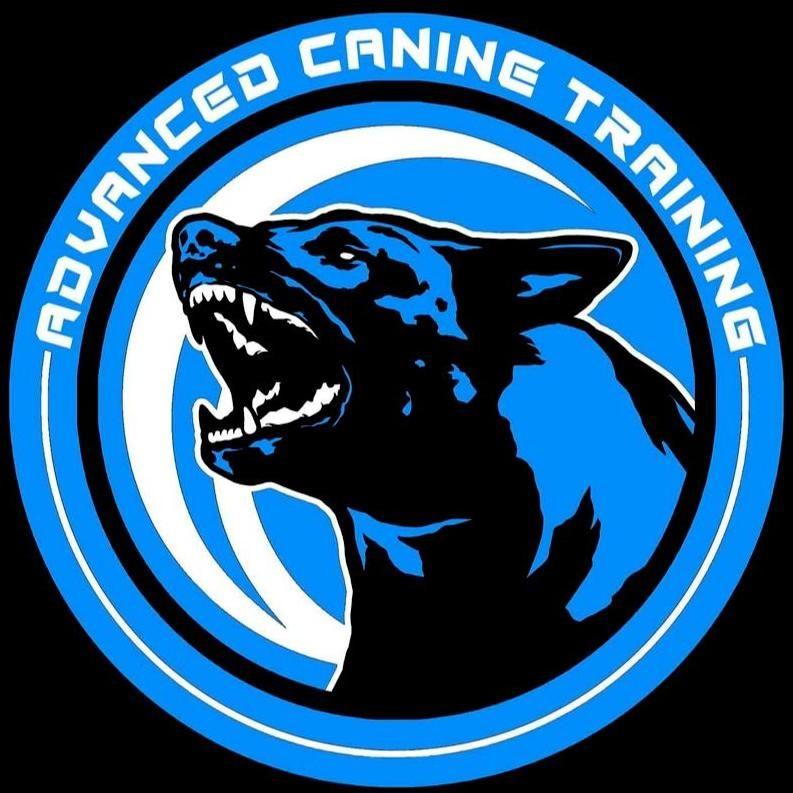Advanced Canine Training