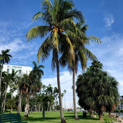 Avatar for Breezy Landscape Design