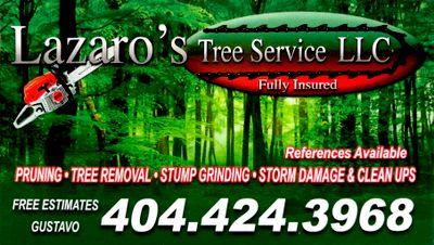 Avatar for Lazaro's Tree Service