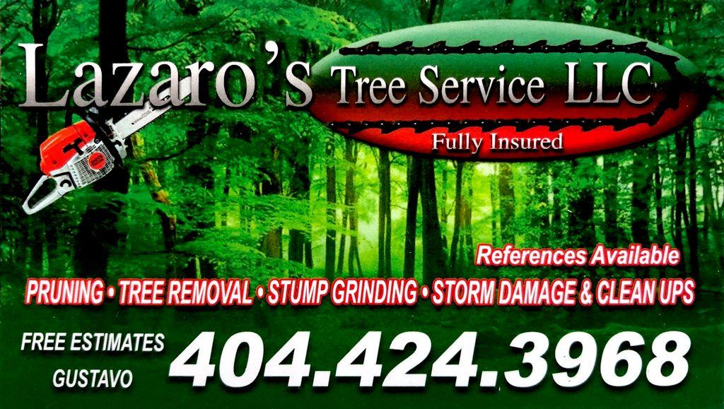 Lazaro's Tree Service