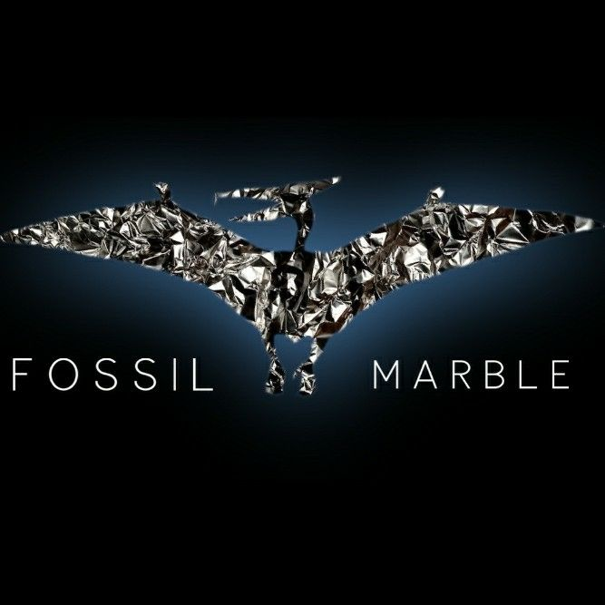 Fossil Marble & Plumbing