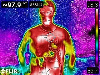 Thermal Body Scans - Bug Sweeps