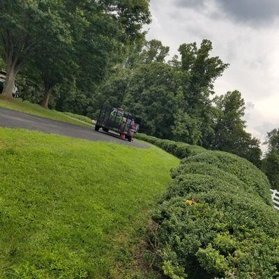 Avatar for Sacras Lawn and Landscape Service