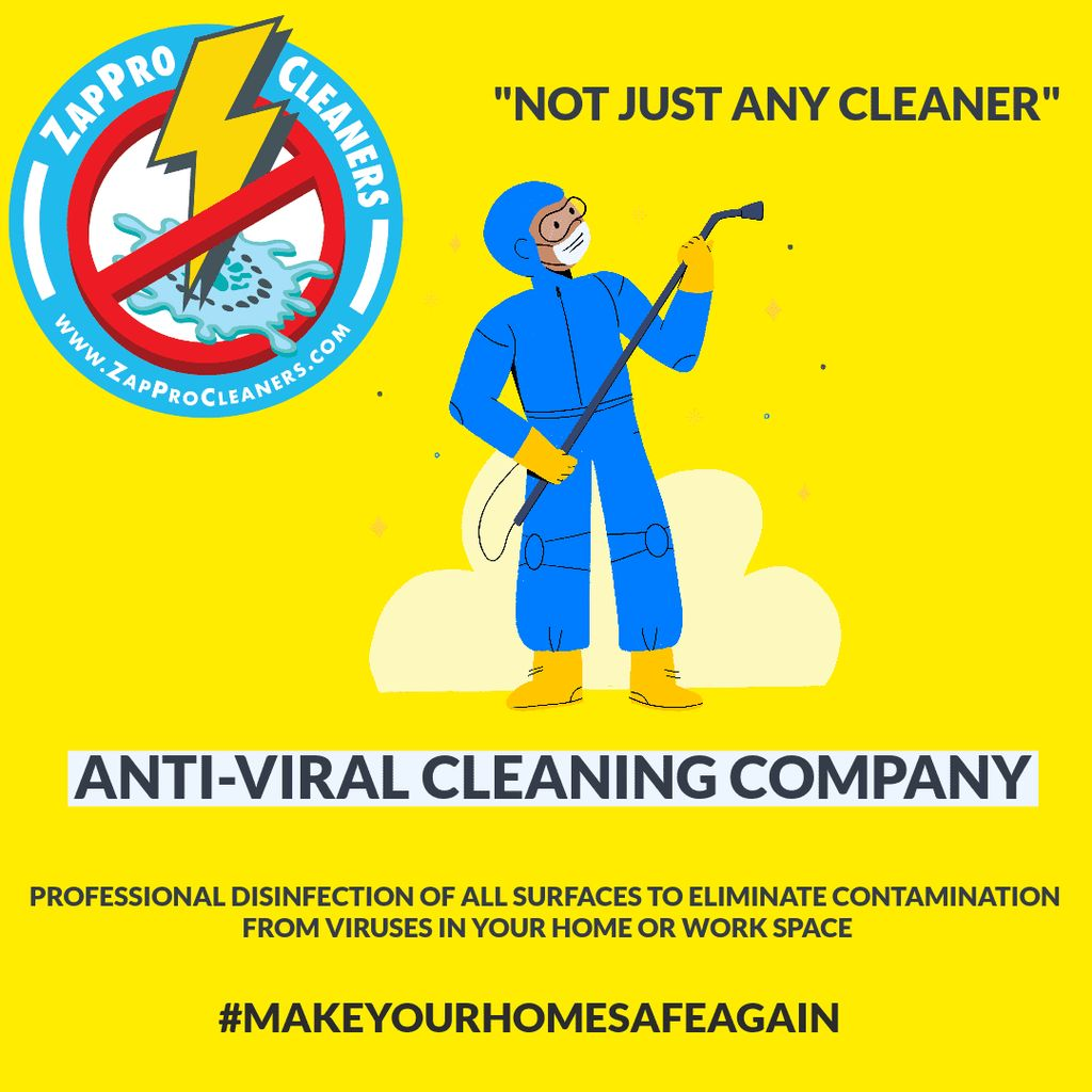 Zap Pro Cleaners