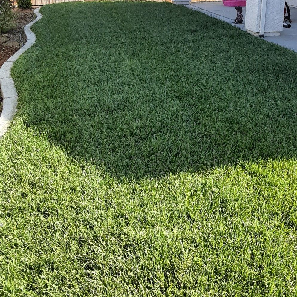 OP Lawn maintenance