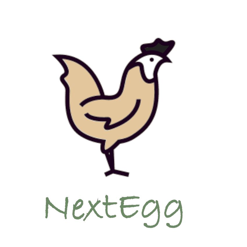 NextEgg - House Cleaning