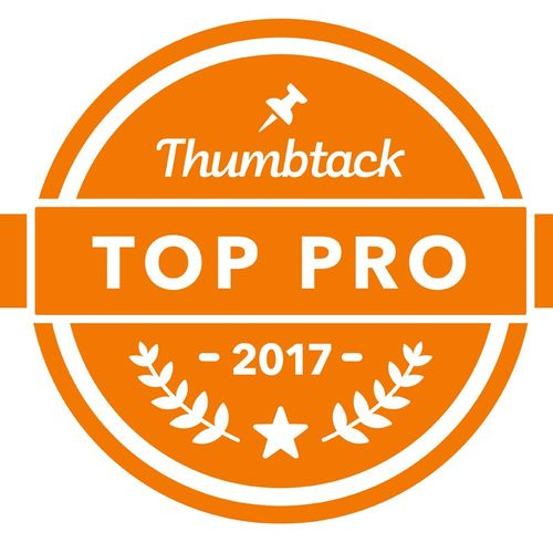 Top Pro in 2017