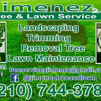 Avatar for Jimenez tree and lawn ,stump grinder service