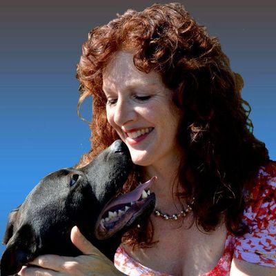 Avatar for Santa Barbara Dog Whisperer