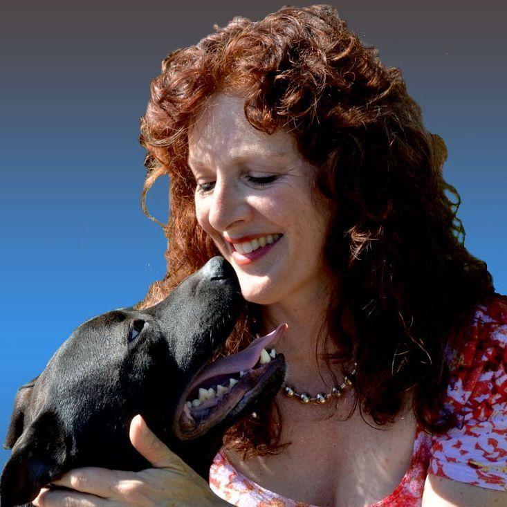 Santa Barbara Dog Whisperer