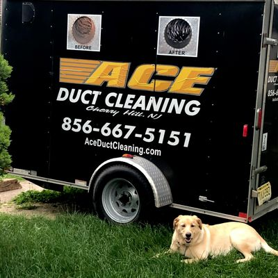 Avatar for Ace Duct Cleaning