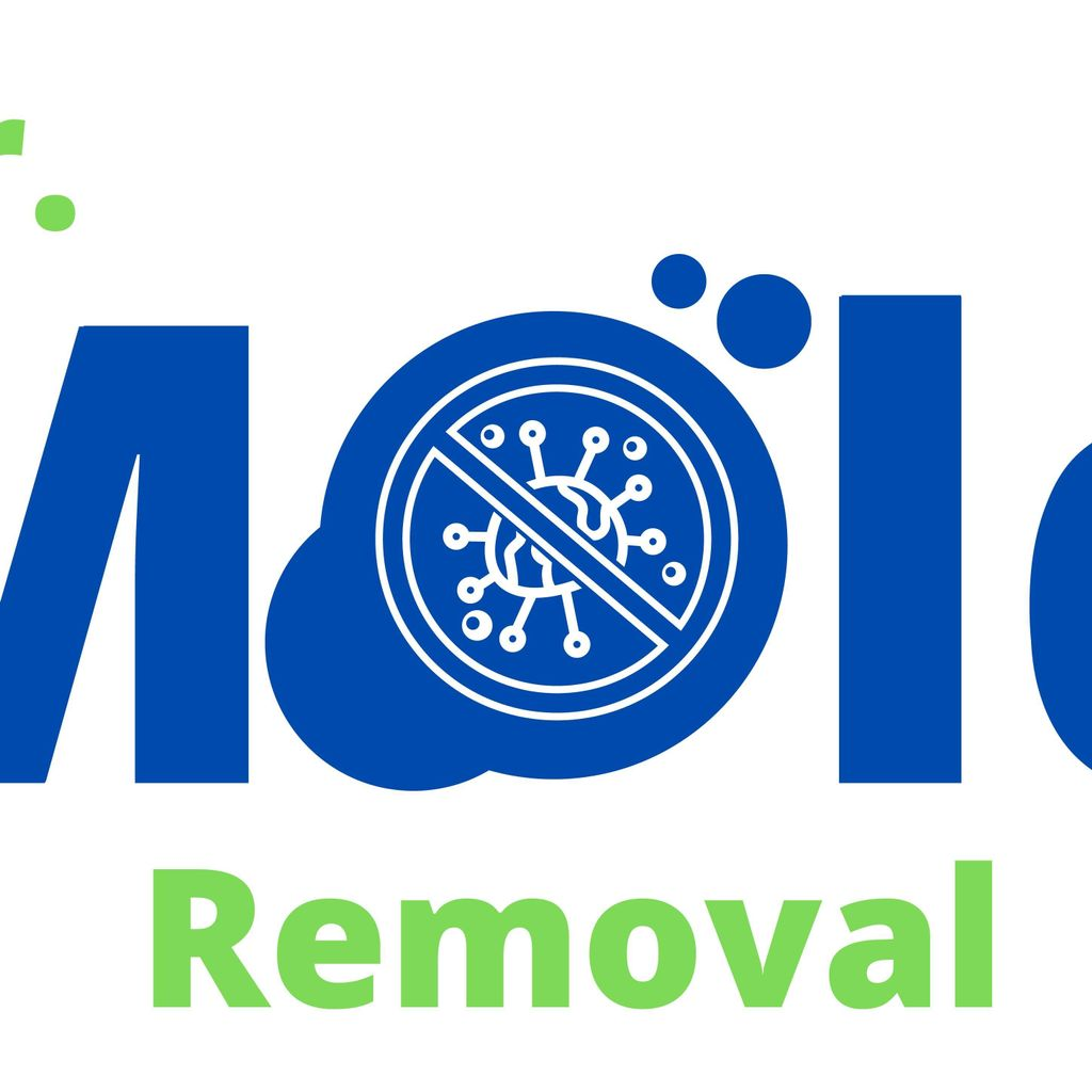 Mr. Mold Removal