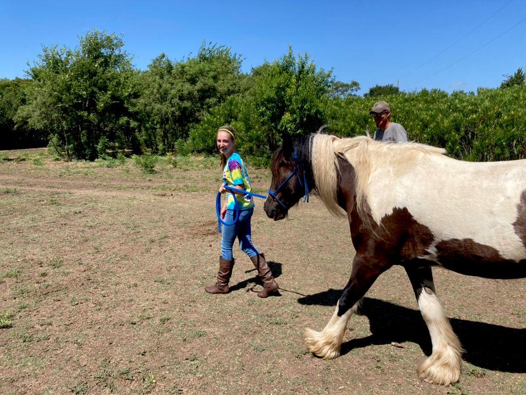 Private Horseback Riding Lessons - Grand Prairie 2020