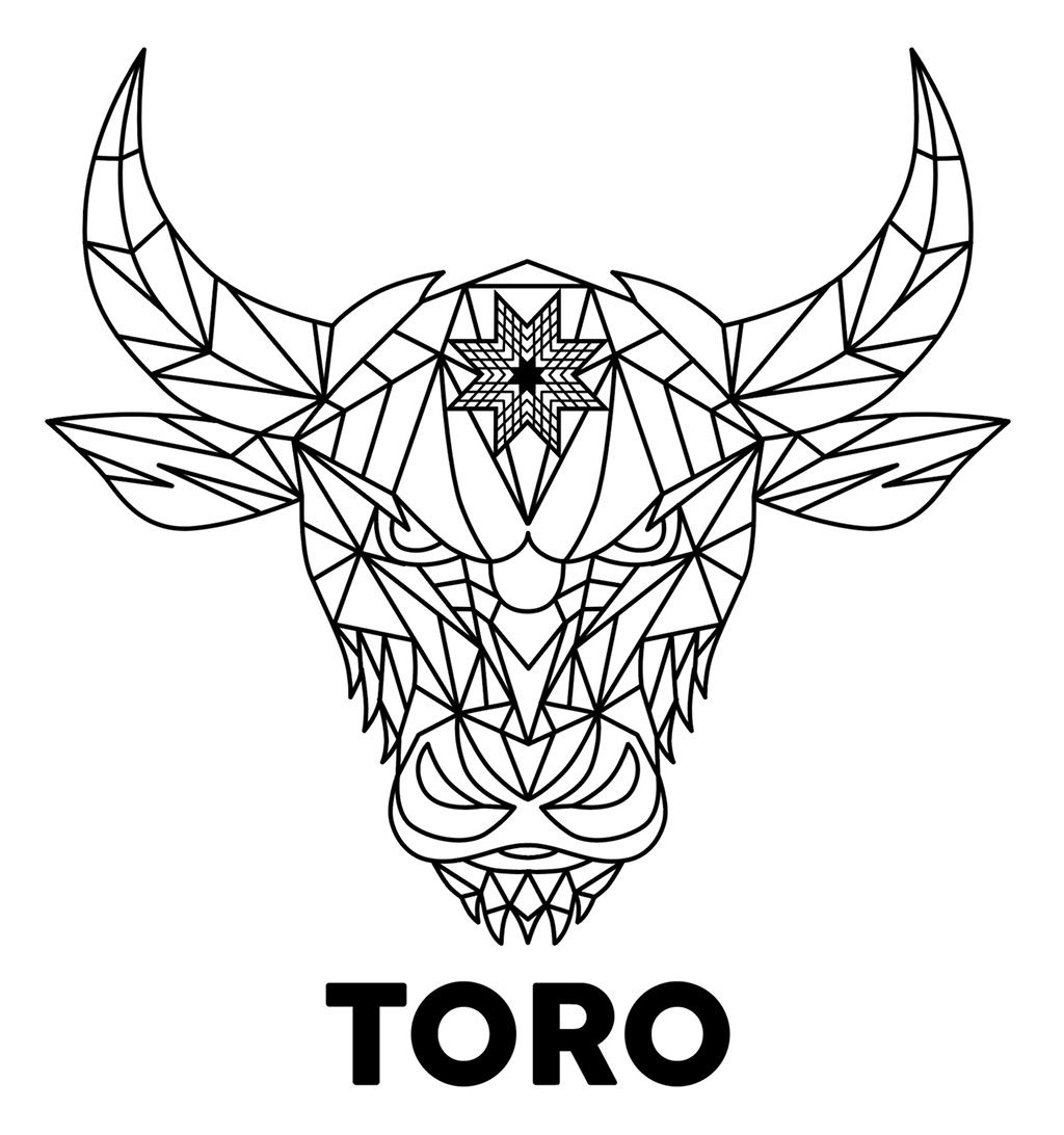 Toro Industries