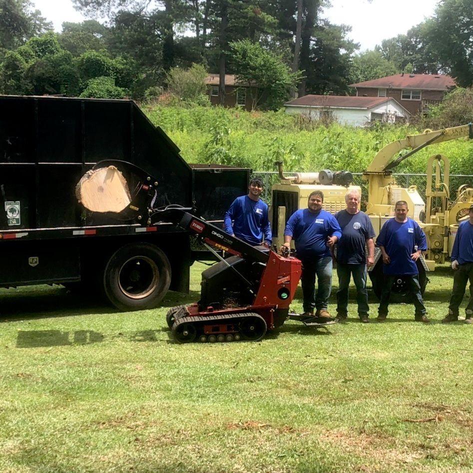 Edys  tree service