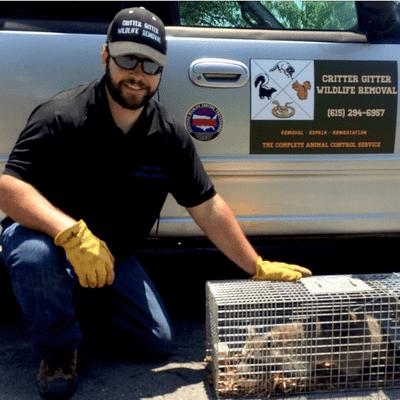 Avatar for Critter Gitter Wildlife Removal