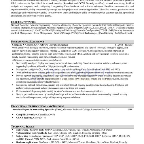 One Pager NSA Resume Sample