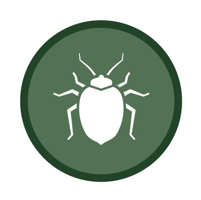 Avatar for Extreme bedbug extermination