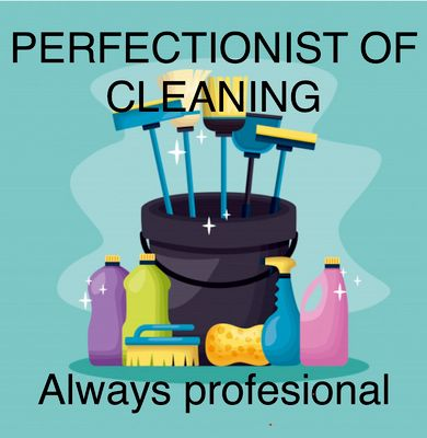 Avatar for Perfectionist of Cleaning