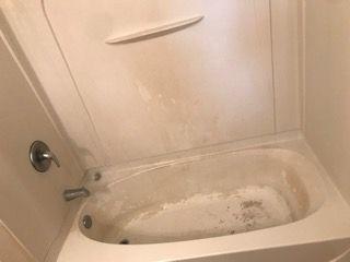 before tub