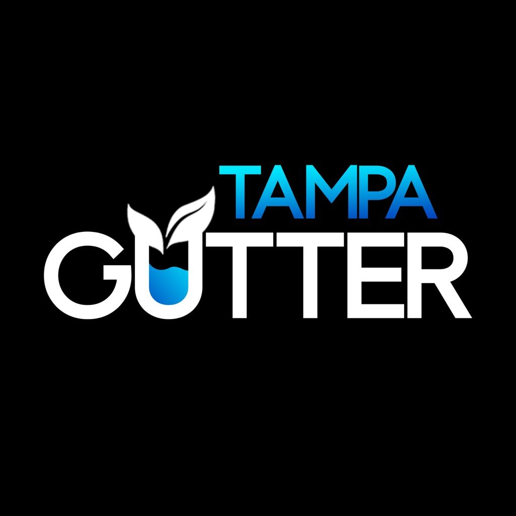 Tampa Gutter