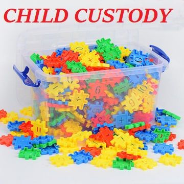 Is your ex-spouse violating your court ordered custody order?  We can put the pieces together for you!