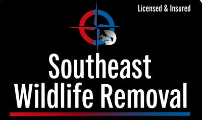 Avatar for Southeast Wildlife & Pest Control