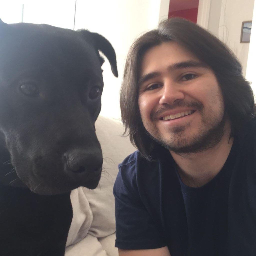True Dog | Obedience Training