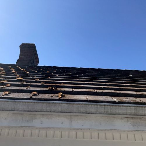 Tile Roofs are not common in the Northwest. But are notorious for growing moss!