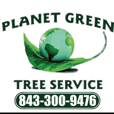 Avatar for Planet Green Tree Service