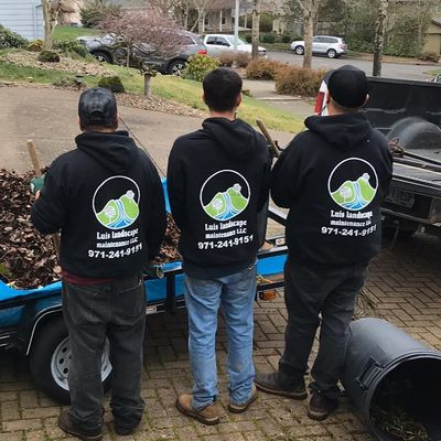 Avatar for Luis landscape maintenance LLC by