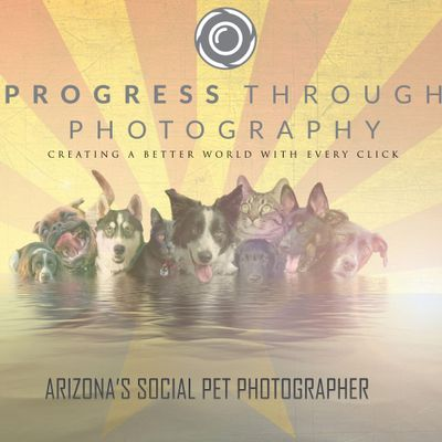 Avatar for Progress Through Photography