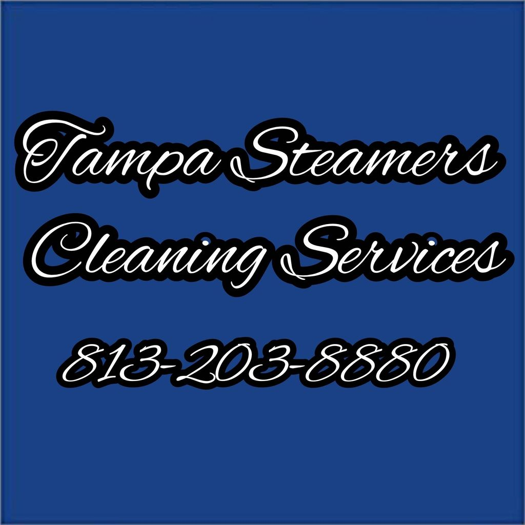 Tampa Steamers Cleaning Services