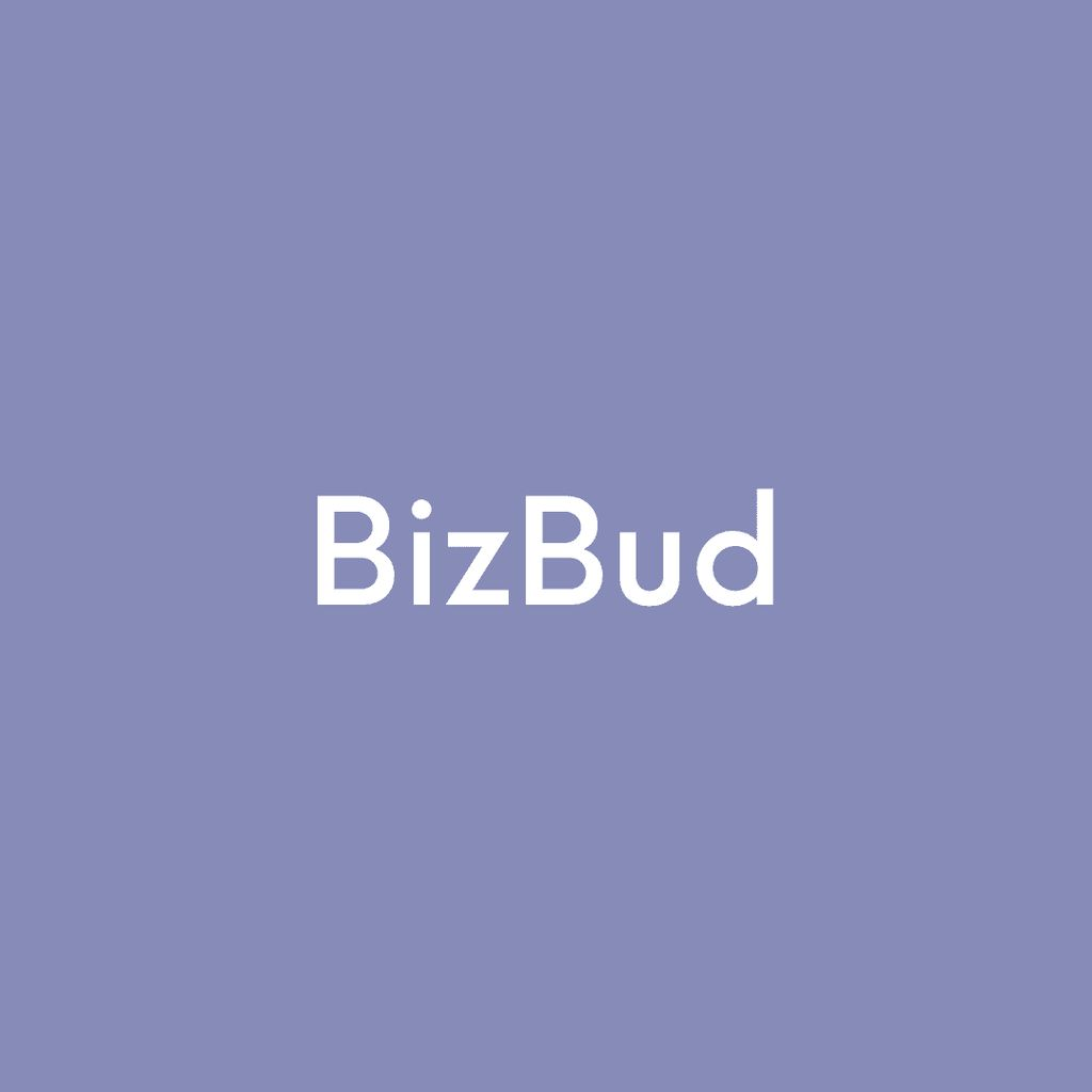 Bizbud