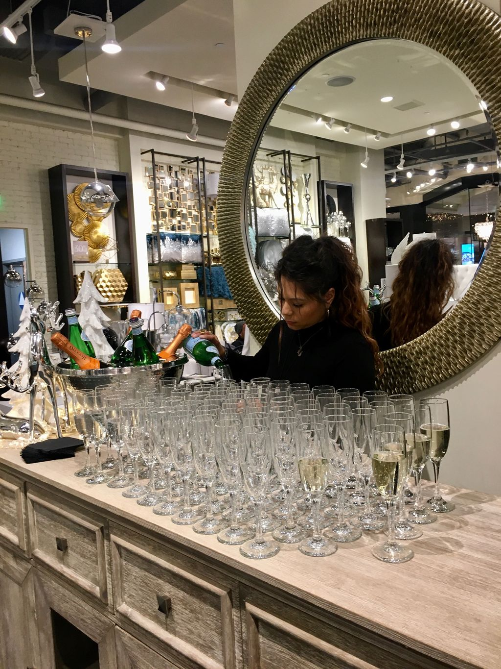 Private Shopping Party