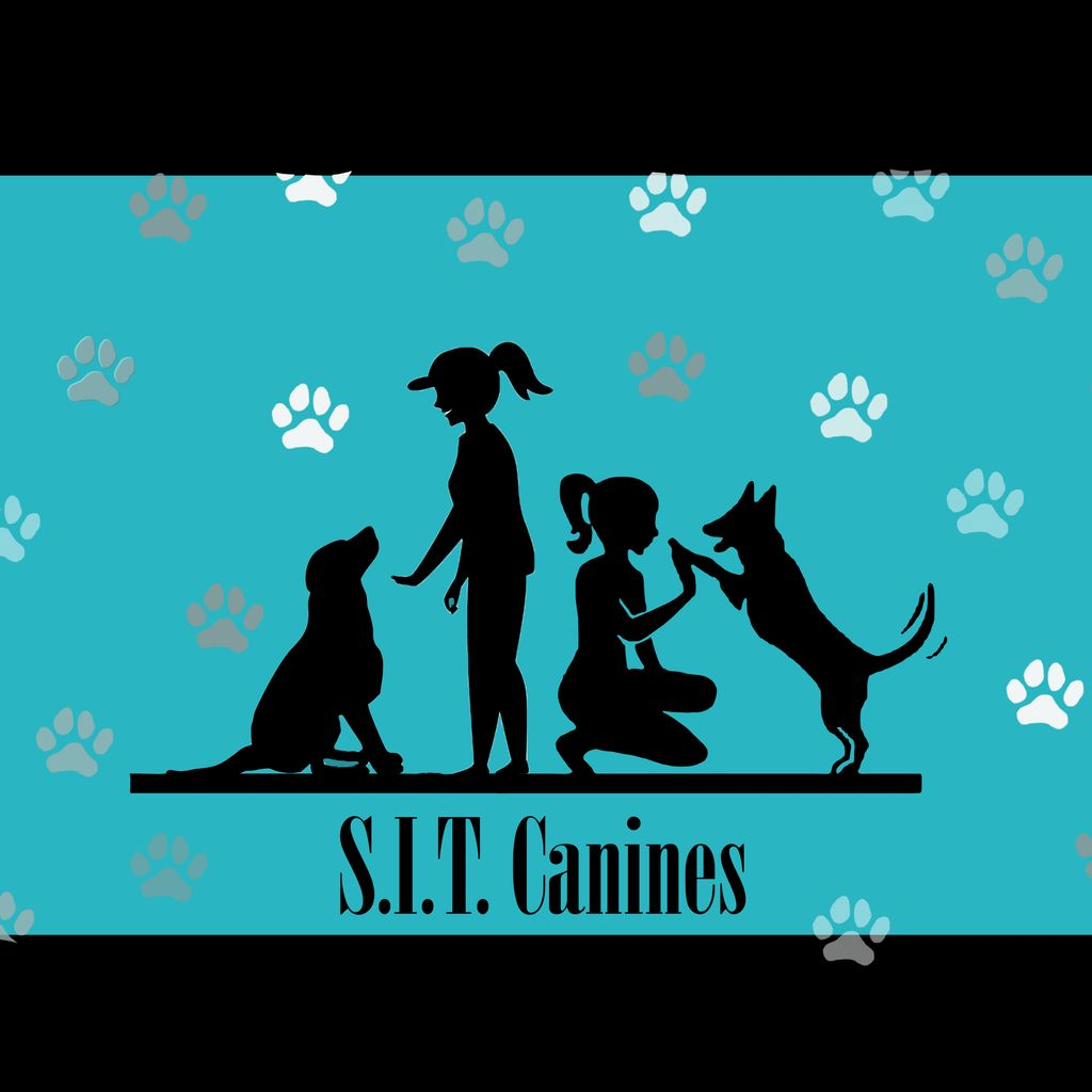 S.I.T. Canines