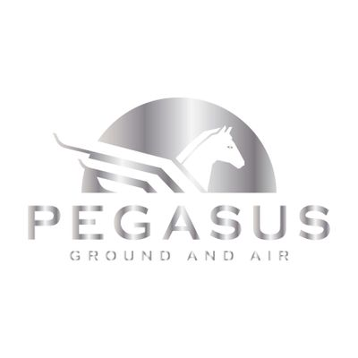 Avatar for Pegasus Realestate Photography