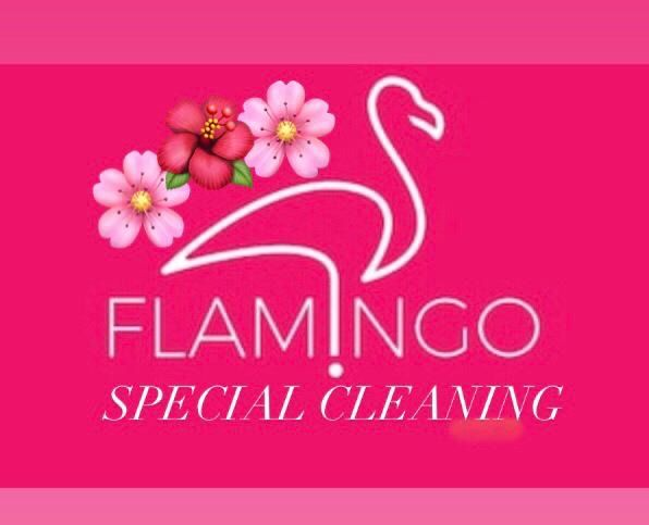 Flamingos Special Cleaning  🌺🦩🌸