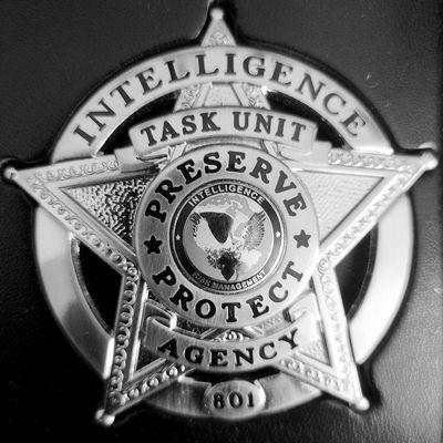 Avatar for Intelligence Risk Management