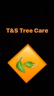 Avatar for T&S TREE CARE