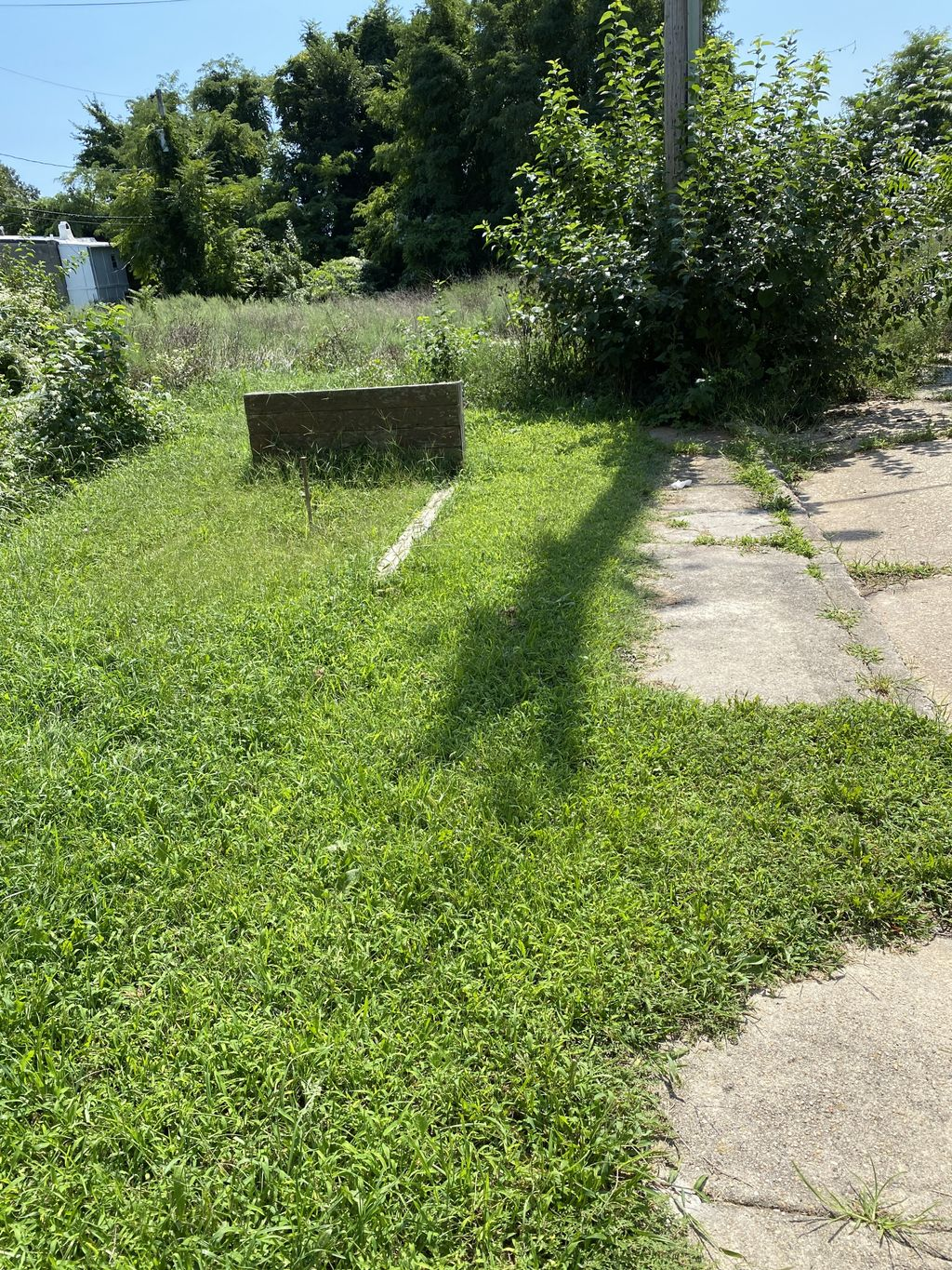 Weeding and shrubs removal