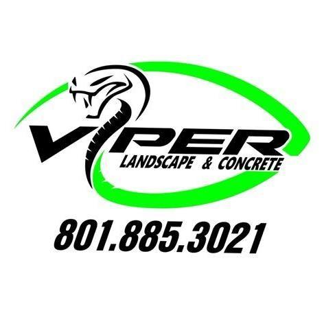 Viper landscape and concrete