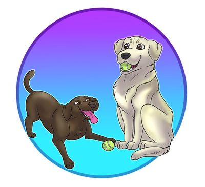 Avatar for Athletic K9 Training  Just Play with Your Dog