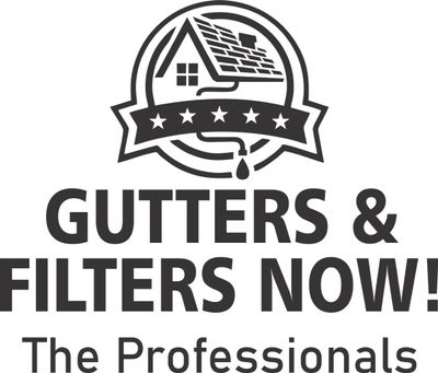 Avatar for GUTTERS & FILTERS NOW